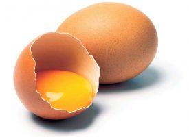Whole Egg Liquid- Frozen