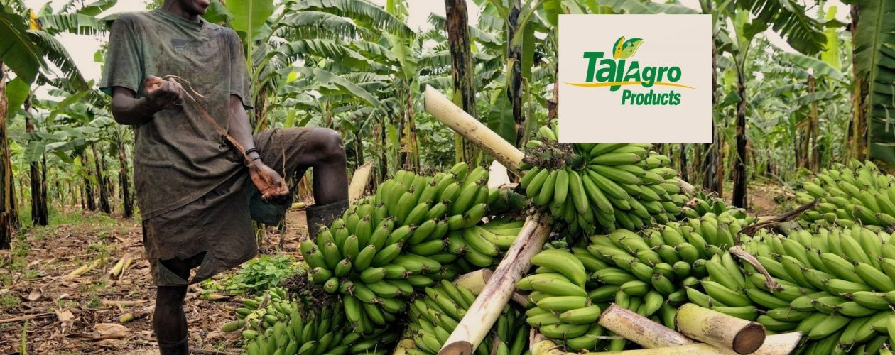 {Mission Africa by Taj Agro} Agriculture sector allocated UGX 1.5 trillion to boost Agro Production in Uganda
