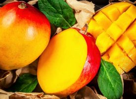 Taj Agro {Alphonso Mango Pulp}